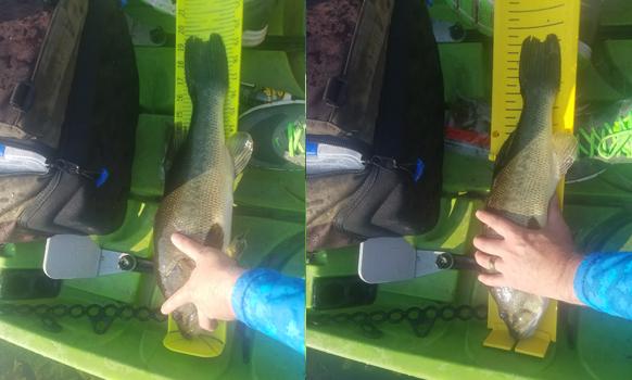 Yak Gear Fish Stik Big Example