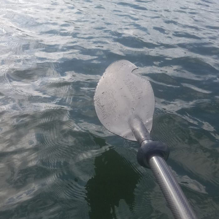backwater assassin paddle
