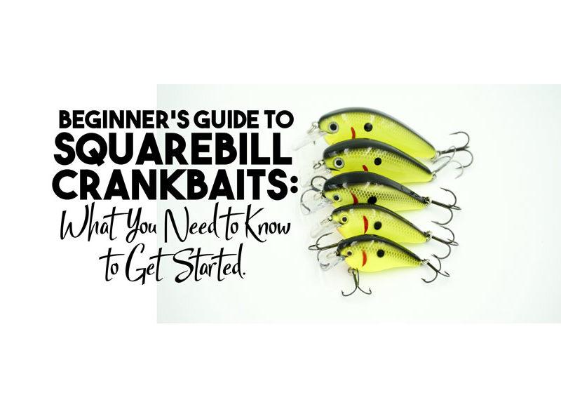 Squarebill Crankbaits : A Beginner's Guide