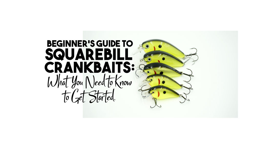 Squarebill Crankbaits : A Beginner's Guide - Payne Outdoors